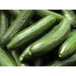 Šalátové uhorky 1kg