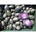Farebné zemiaky fialové 1kg