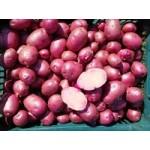 Farebné zemiaky červené 1kg